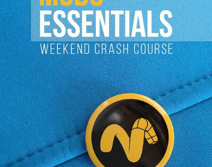 modo_essentials-687x675